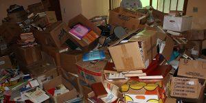 Escritores de Holambra buscam apoio para transportar 10 mil livros para o Piauí