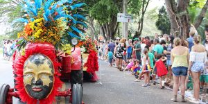 Confira as fotos da Parada das Flores em Holambra