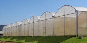 Empresa TROPICAL ESTUFAS de Bragança-Paulista  abre vaga para Técnico Comercial